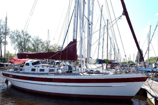 Sailboat Golden Cowrie 38
