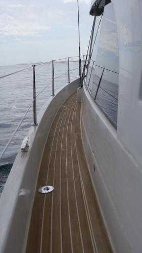 Albatross 42