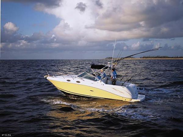 Sea Ray Amberjack