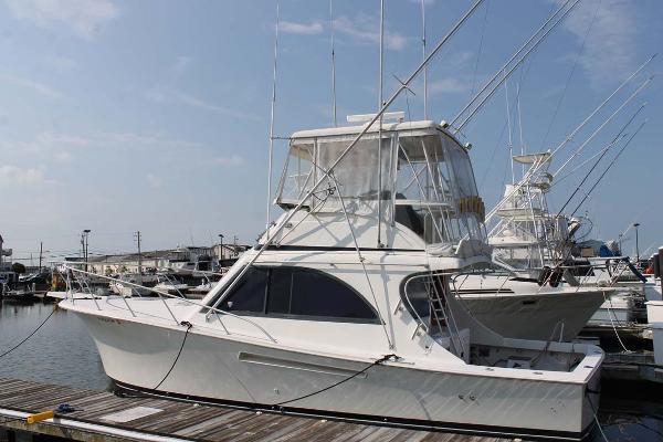 Jersey 36 Convertible Profile