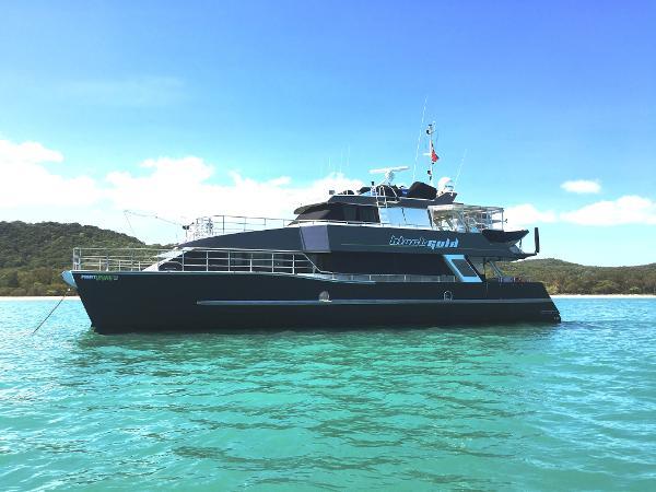 New Wave Catamaran
