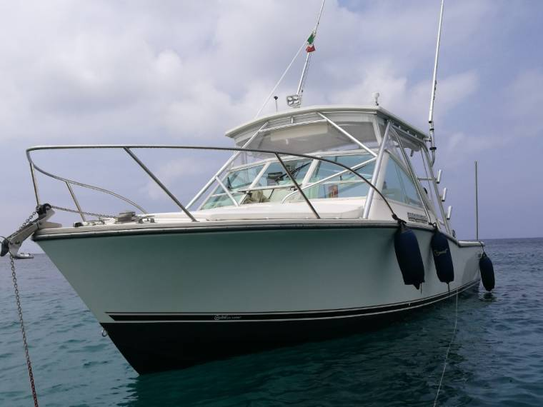 Carolina Yachts CAROLINA YACHTS Carolina 28
