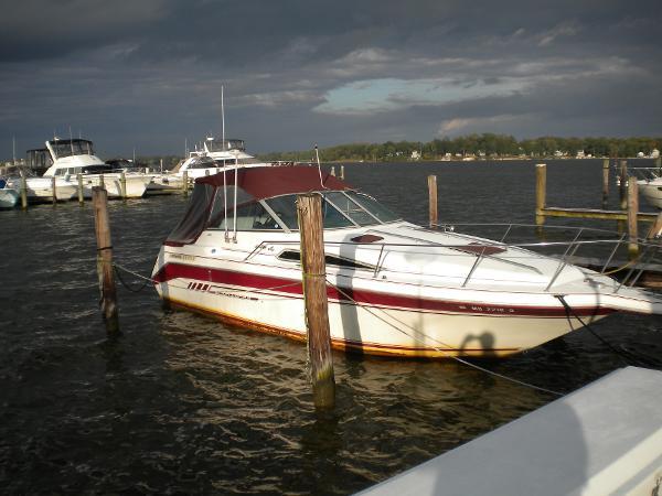 Sea Ray 290 Sundancer Battatude