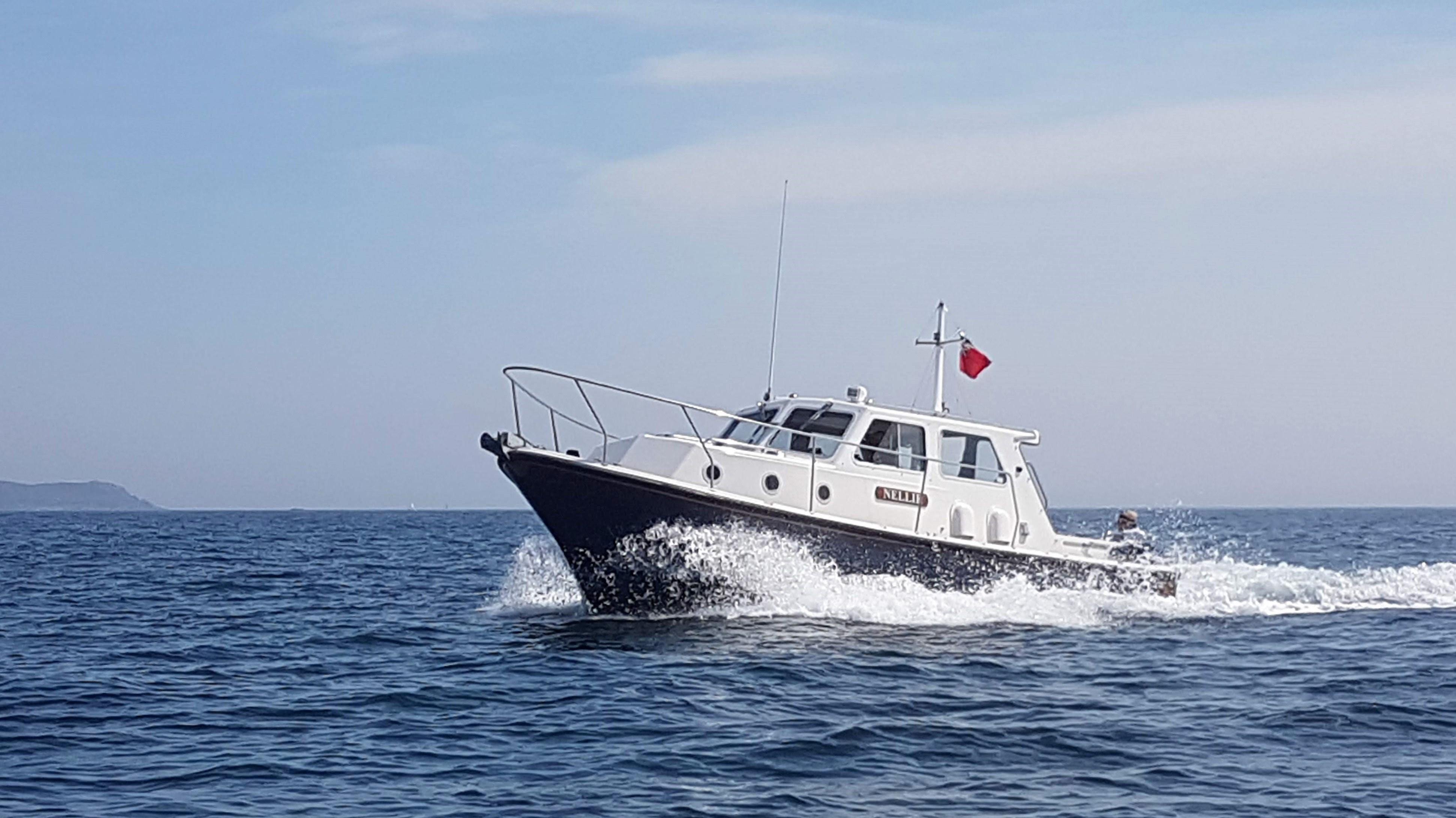 Nelson Seaward 29 Nelson 29
