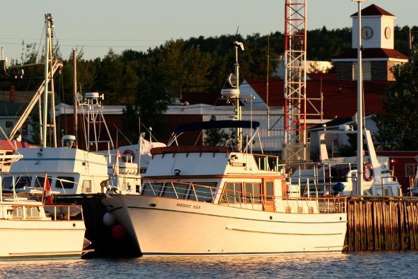 De Fever 41 Trawler