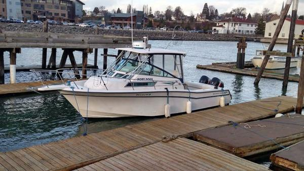 Grady-White Marlin 300 Profil