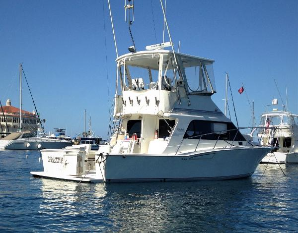 Cabo Rico Flybridge GREAT LINES