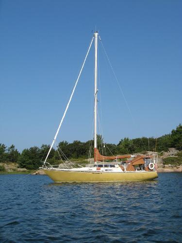 Viking 33