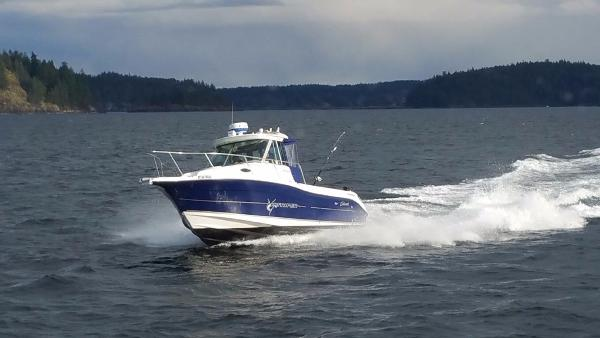 Striper Seaswirl Very Fast