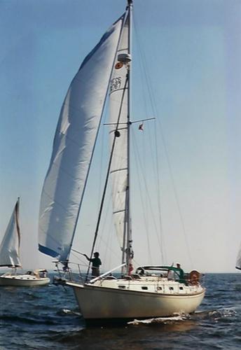 Island Packet 35 Sea Robin Broad Reaching