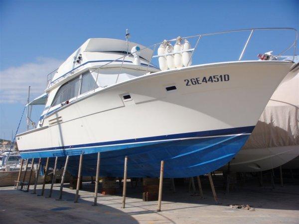 Bertram 46 Flybridge Motor Yacht Main Image