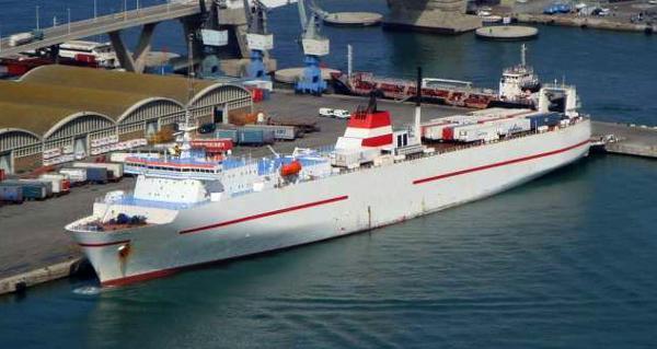Custom Fast RoRo Cargo Vessel