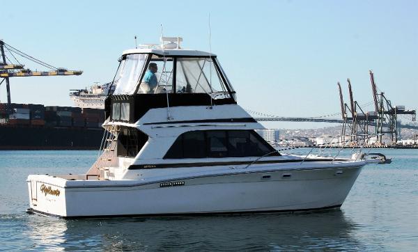 Riviera 33  Hardtop Sportfisher Starboard Profile