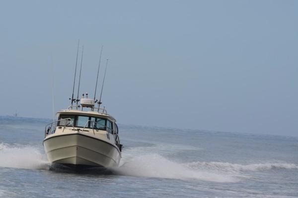Arima Sea Ranger 21 Explorer