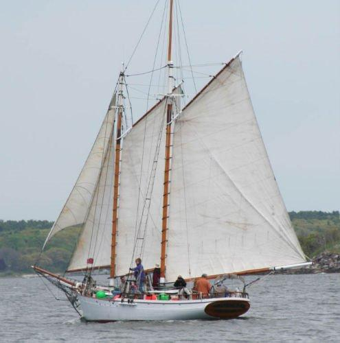 Murray Peterson gaff-rigged Topsail Coasting Schooner