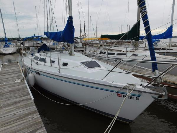 Catalina 320 Stb Bow