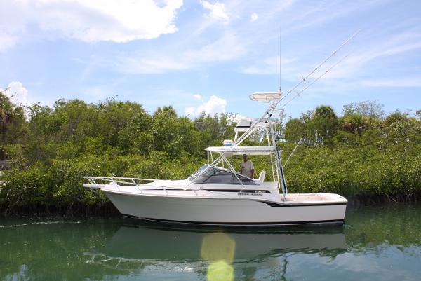 Blackfin Combi 31