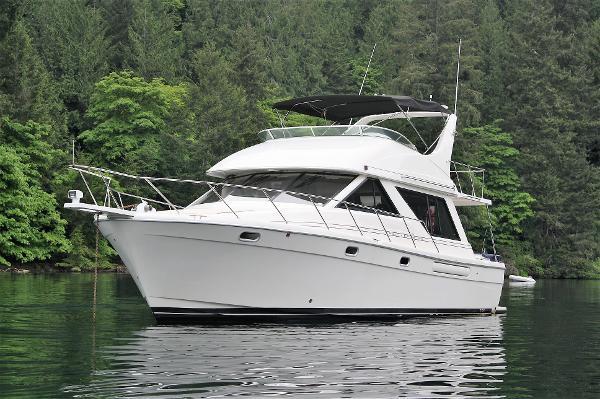 Bayliner 3988 Good Looking Boat!