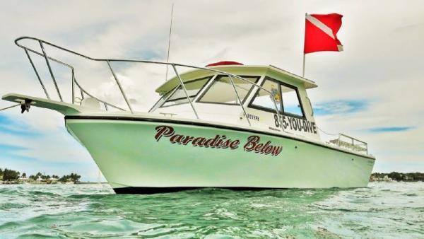 Sea Hawk Island Hopper 30