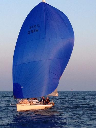 Carrera Boats 29