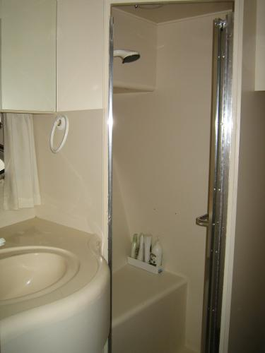 Sink & Shower stall in master