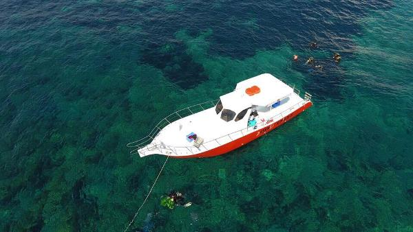 Custom Sport Fishing Boat / Dive Boat