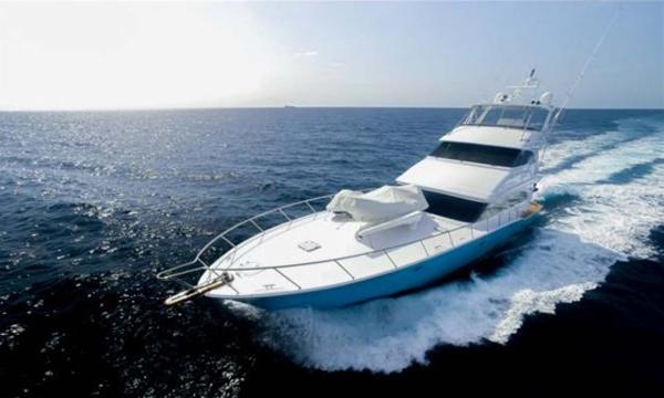 Sea Force IX Sport Fisherman Profile