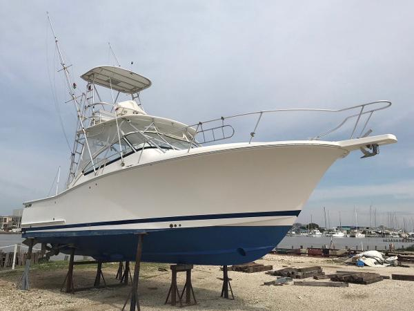 Luhrs 31 image1