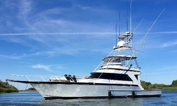 Striker Compare Viking Hatteras Custom