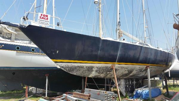 Alfa Yacht Vaalia 48