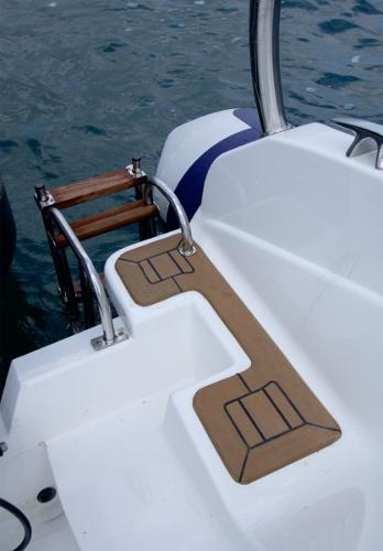 Cobra Ribs Nautique 7.6m Boarding Ladder