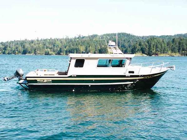 Silver Streak Cabin Cruiser