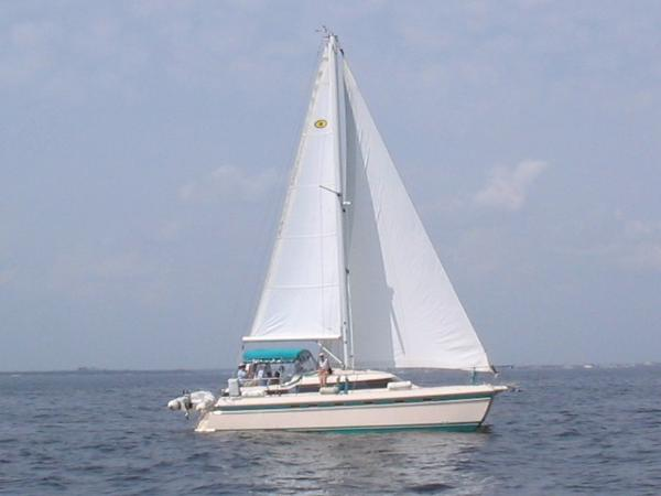 Island Packet Cat 35 Under Sail