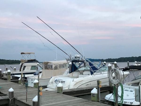 Sea Ray 290 Amberjack Zott's Yott