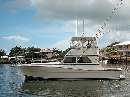 Viking 41 Conv Sport Fisher THUNDERBIRD