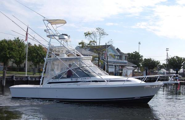 Blackfin Combi 33 Main Profile