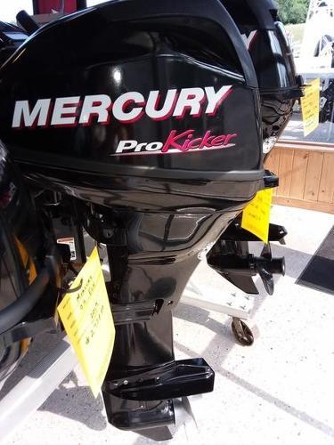 Mercury 15 PK ELPT Carb