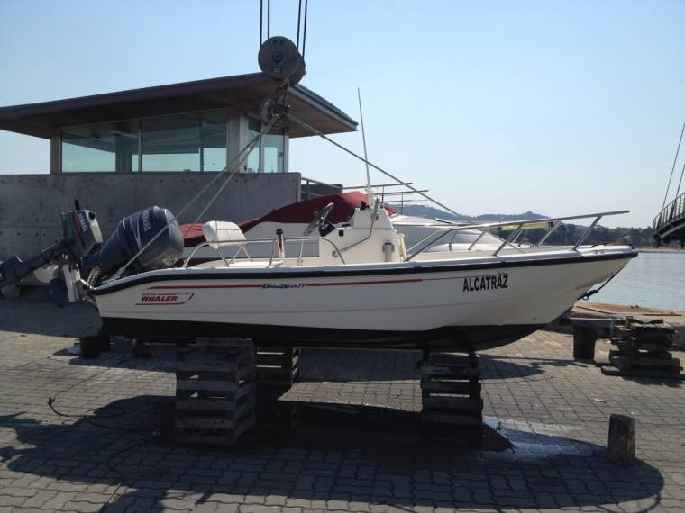 Boston Whaler boston whaler 14 dountless
