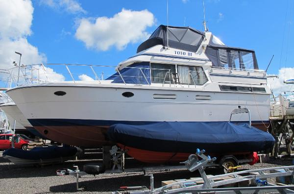 TransWorld Empress 39