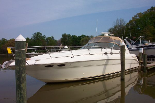 Sea Ray 410 Sundancer Photo 1