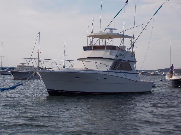 Viking Sportfish