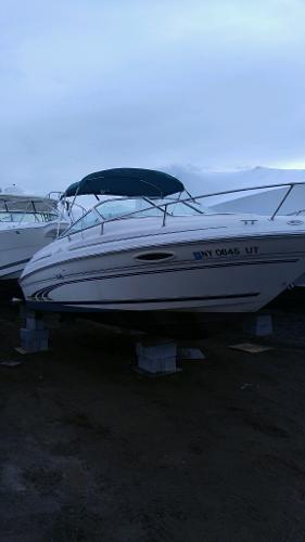 Sea Ray Express Crusier