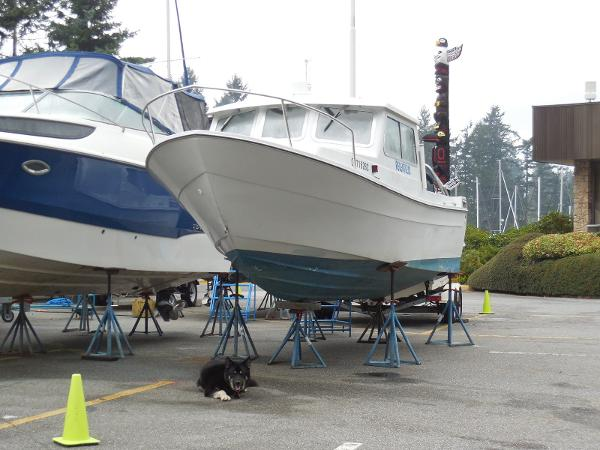 SeaSport Sportsman 2200