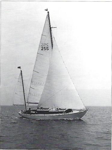 Nielsen Yawl