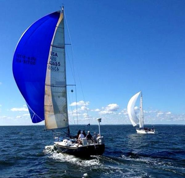 "Canadian Sailcraft 40 CS 40 - ""Wharf Rat"" Under Spinnaker"