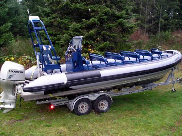 Lifetimer Pontoon / Rigid Inflatable