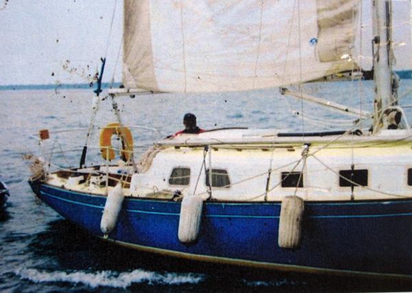 Bristol 33