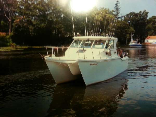 Baha Cruisers 290 King Cat Ht