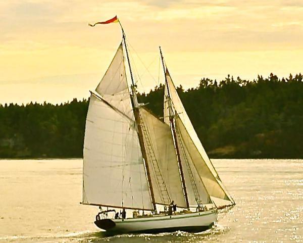 Schooner boats for sale 2 for 68 garden design gaff rigged schooner