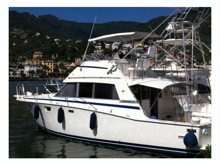 Bertram Yacht BERTRAM YACHTS BERTRAM 38 III